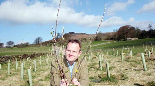 Matthew Mason with tree